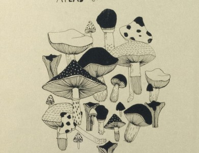 Лабендж М. 'Атлас грибів', трафаретний друк, 70х50 M. Labendzh 'Atlas Of Mushrooms', screen printing, 70x50
