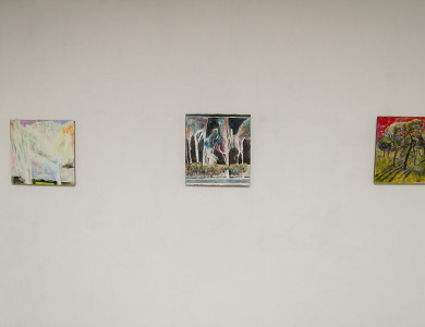 Success story. Debut exhibition of Diana Faksh
